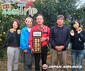 JAL × Tomarina