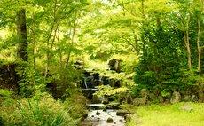 Nature Resort in Kuma Kogen