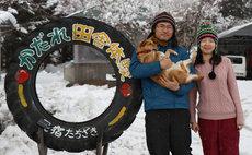 Aomori Farm stay - Harvest pizza making
