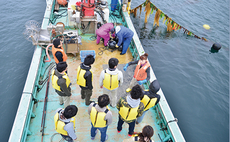 Oyster fishing with the fisher couple in Kesennuma