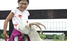 Onuma Nagareyama Ranch / stay and experience plan 5