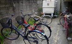 Free bike & free portable