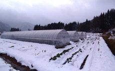 農家の宿 星雪館2