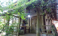 Goan/ Log House-style room and organic vegetables
