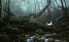 コンビニロッジ 森のきらめき