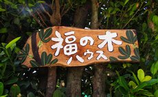 Hukunoki house