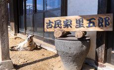 """Satogoro"" Guesthouse w/ Friendly Goat"