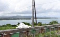 古宇利Parlour -古宇利島地點便利的民家-