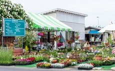 Mimi's Flower Garden Spacious Room
