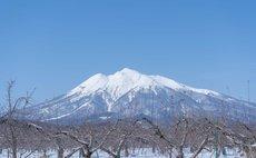フロア貸切・最大7名宿泊 弘前城へ車15分 - フラワーガーデン・ミミ