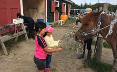Onuma Nagareyama Ranch / stay and experience plan 6