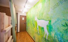Host hostel KIKO's Kiko room2
