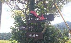 宿 hanagusiku 附早餐套餐