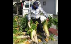 農家民宿 KUNIMASUDA