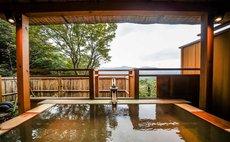 New! Mt Fuji View Duplex 2BR Vacation Home & Onsen 4