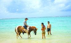 5名迄一律料金/大自然と乗馬体験 コテージ一棟貸切