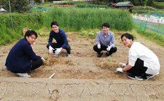 Organic veg&Eco&Traditional Farmstay :D&B included