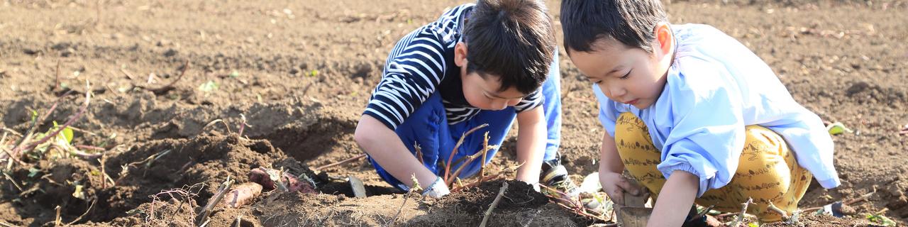 農業 image