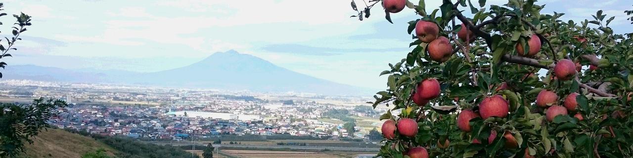 平川りんご収穫体験ファームステイ