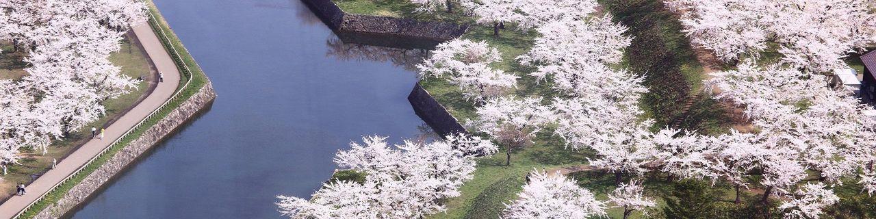 北海道桜名所